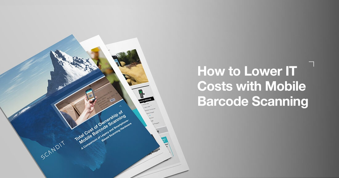 Total-Cost-of-Ownership-with-Mobile-Barcode-Scanning-Ebook-blogpost